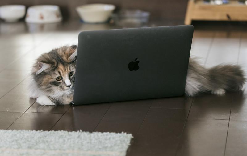 個人ブログの直帰率と滞在時間はどのくらいが目安?改善方法も紹介